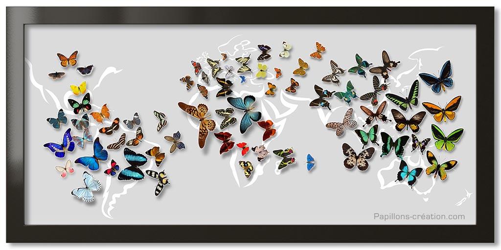 Posters envol e de papillons - Images de papillon ...